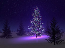 Krásné a pohodové svátky