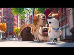 Kino Svět,Tajný život domácích mazlíčků