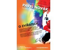 Koncert Pavla Nováka