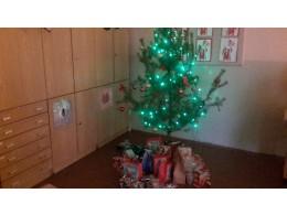 Vánoční besídka