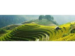 Svět kolem nás - Vietnam