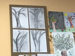 Naše stromy
