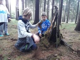 Stavíme domky v lese