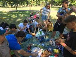 Piknikujeme