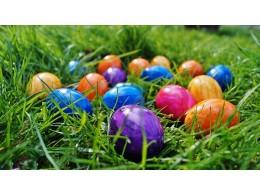 Veselé Velikonoce  ☺☺☺